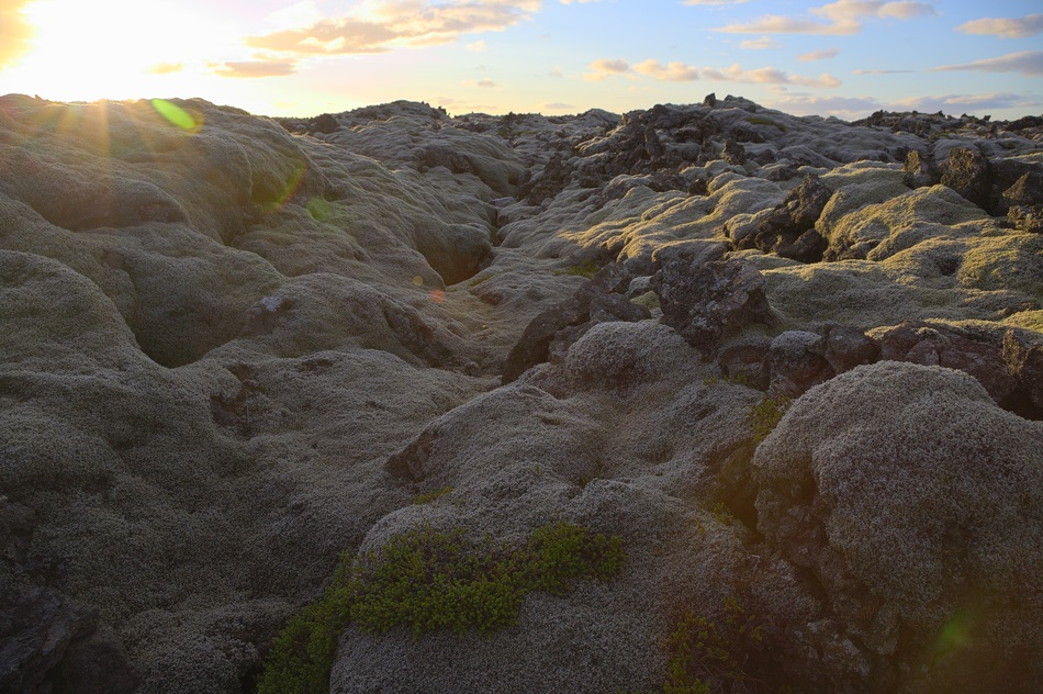 Lavafält på Island