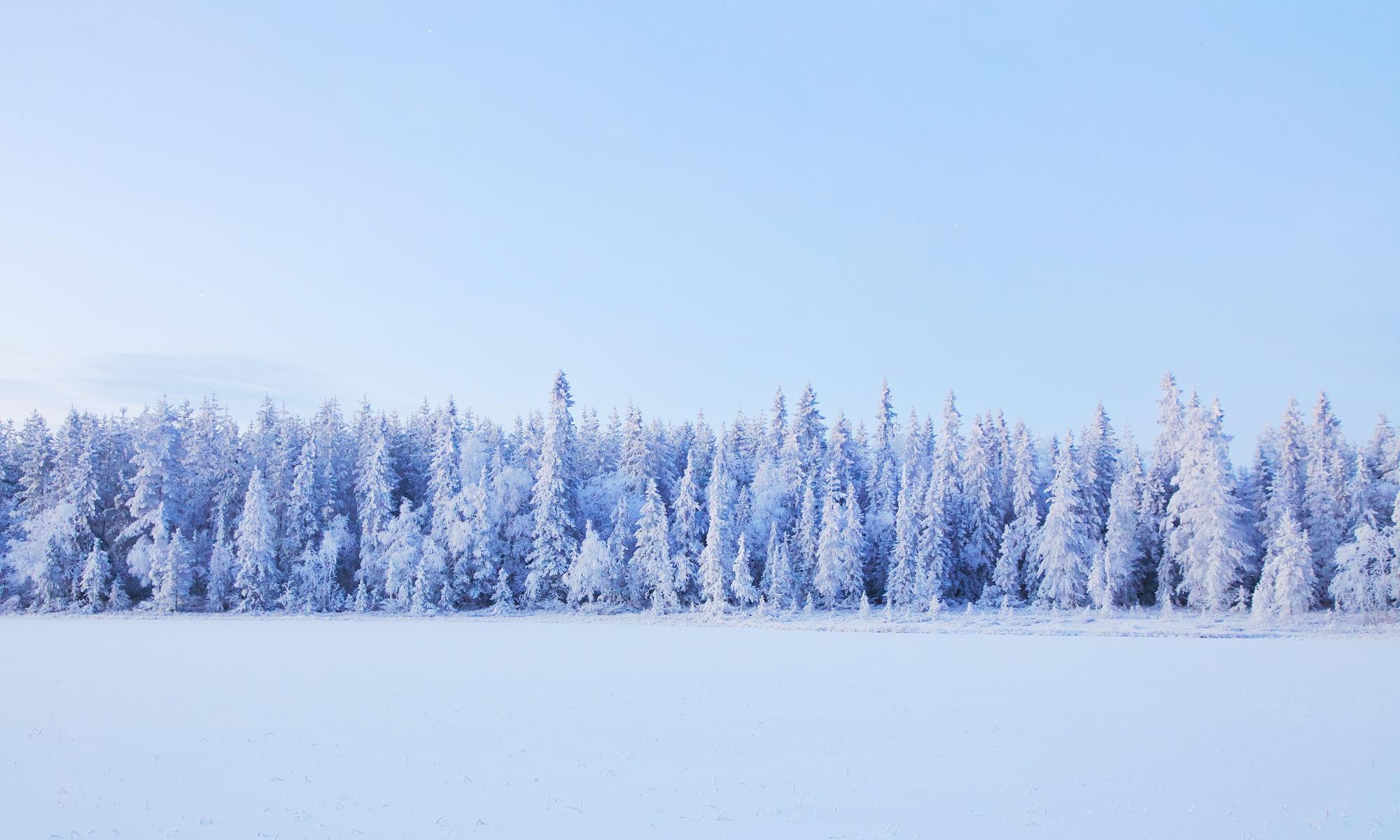 Image result for vinterbild