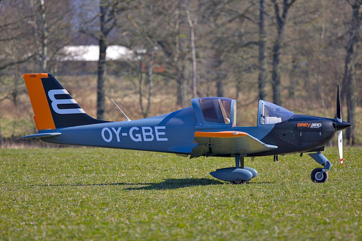 Greybird som nödlandat på gräsfält