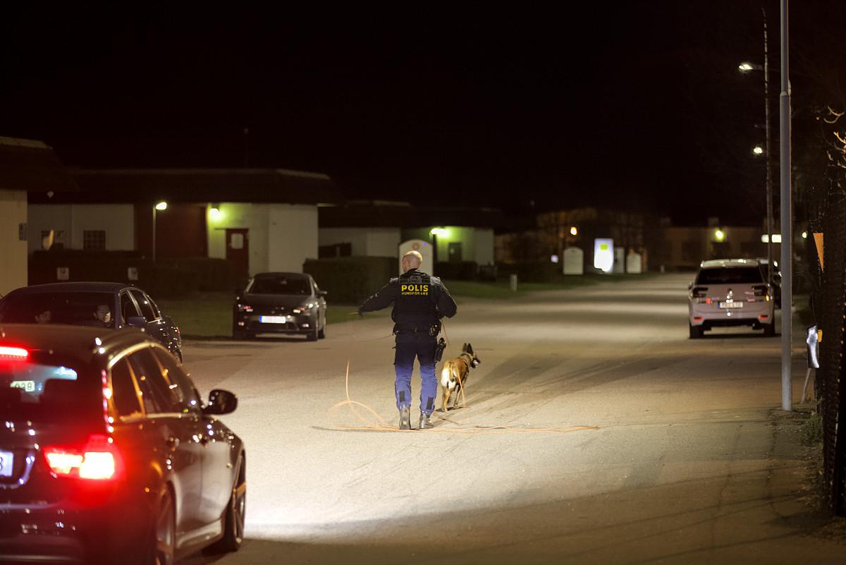 Polisens hundförare på Metallgatan i Ängelholm